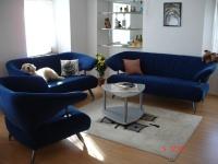 3,5 Zi-Wohnung / Wohnzimmer